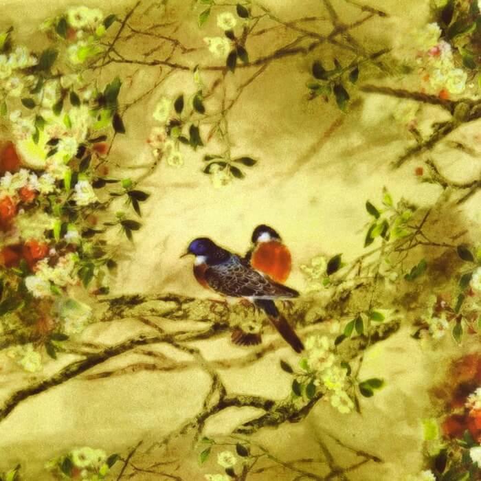 BIRDS 02 фото