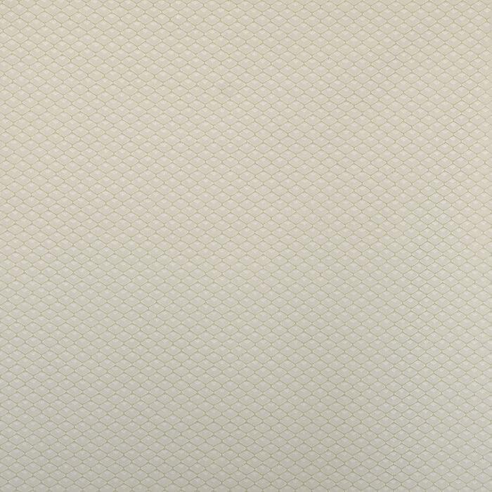 GRILLAGE 225 GREEN -KE фото